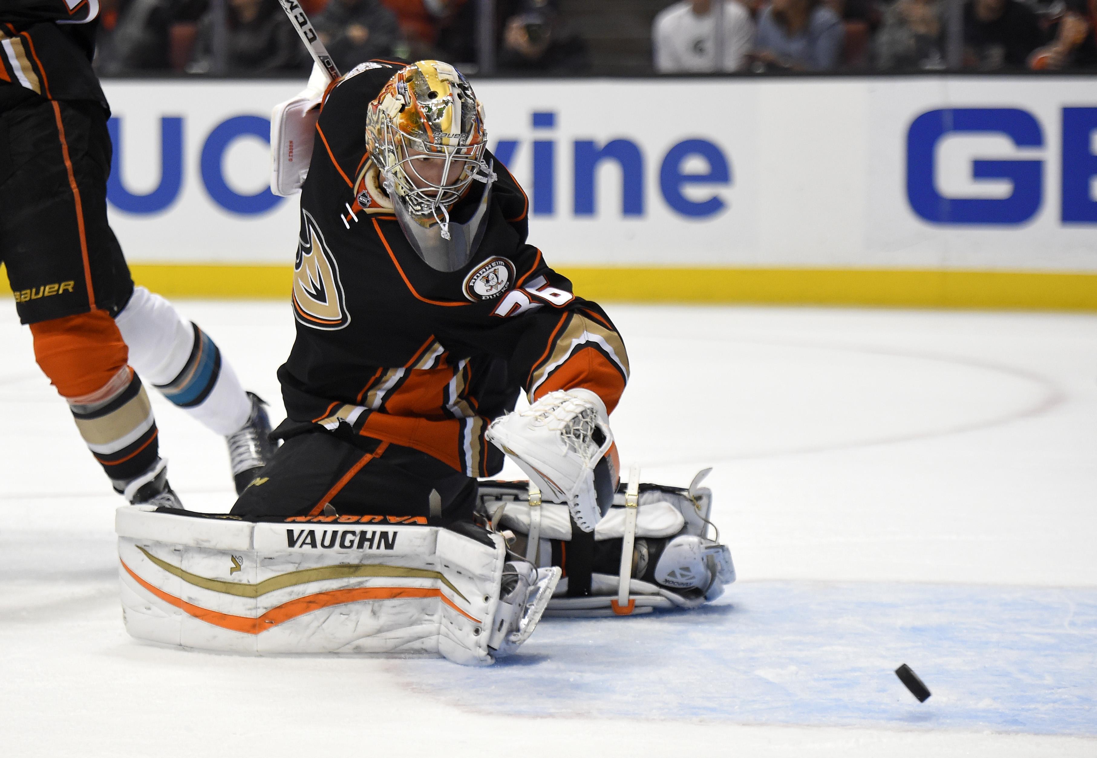 Sharks_ducks_hockey