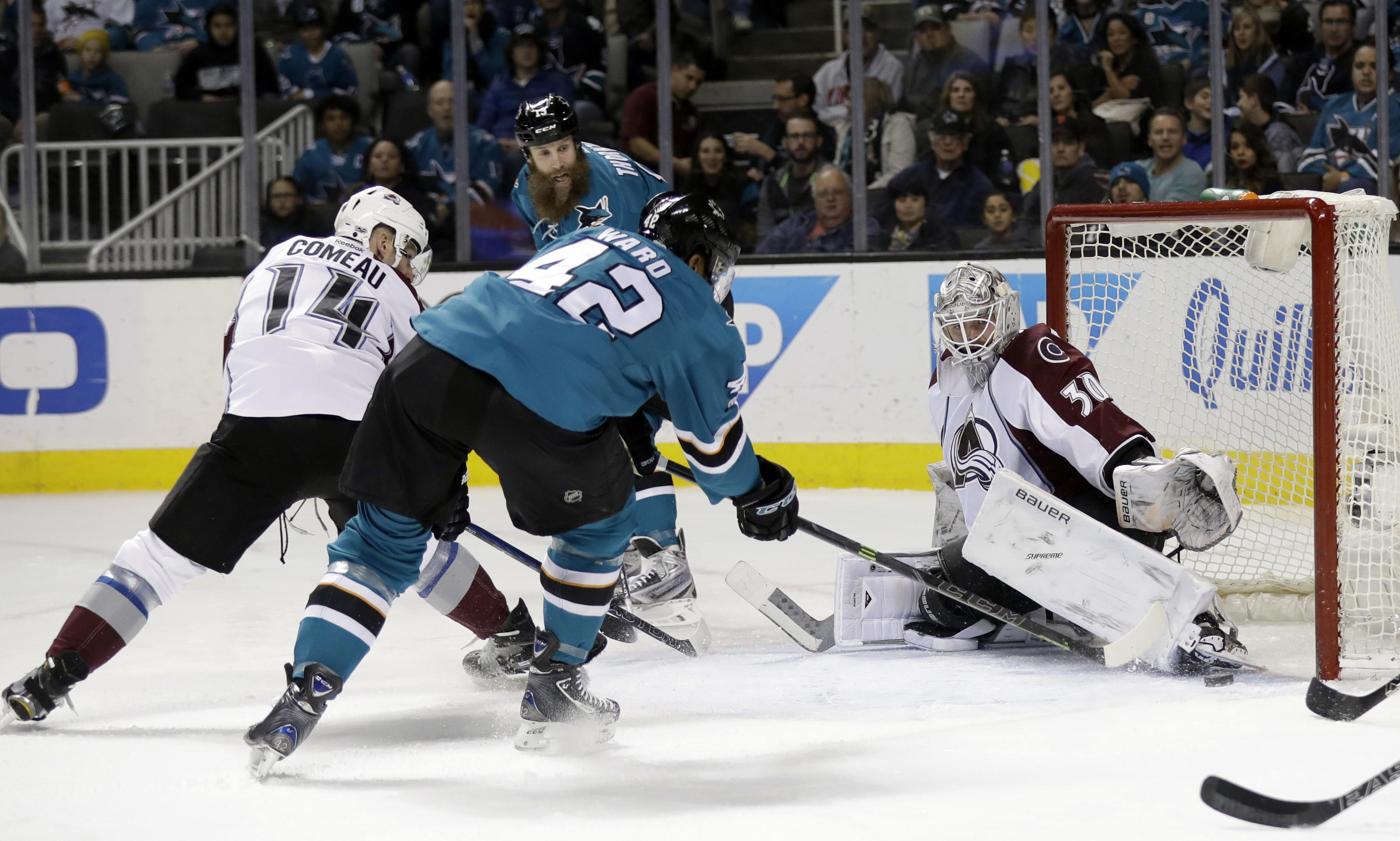 Avalanche_sharks_hockey_10701