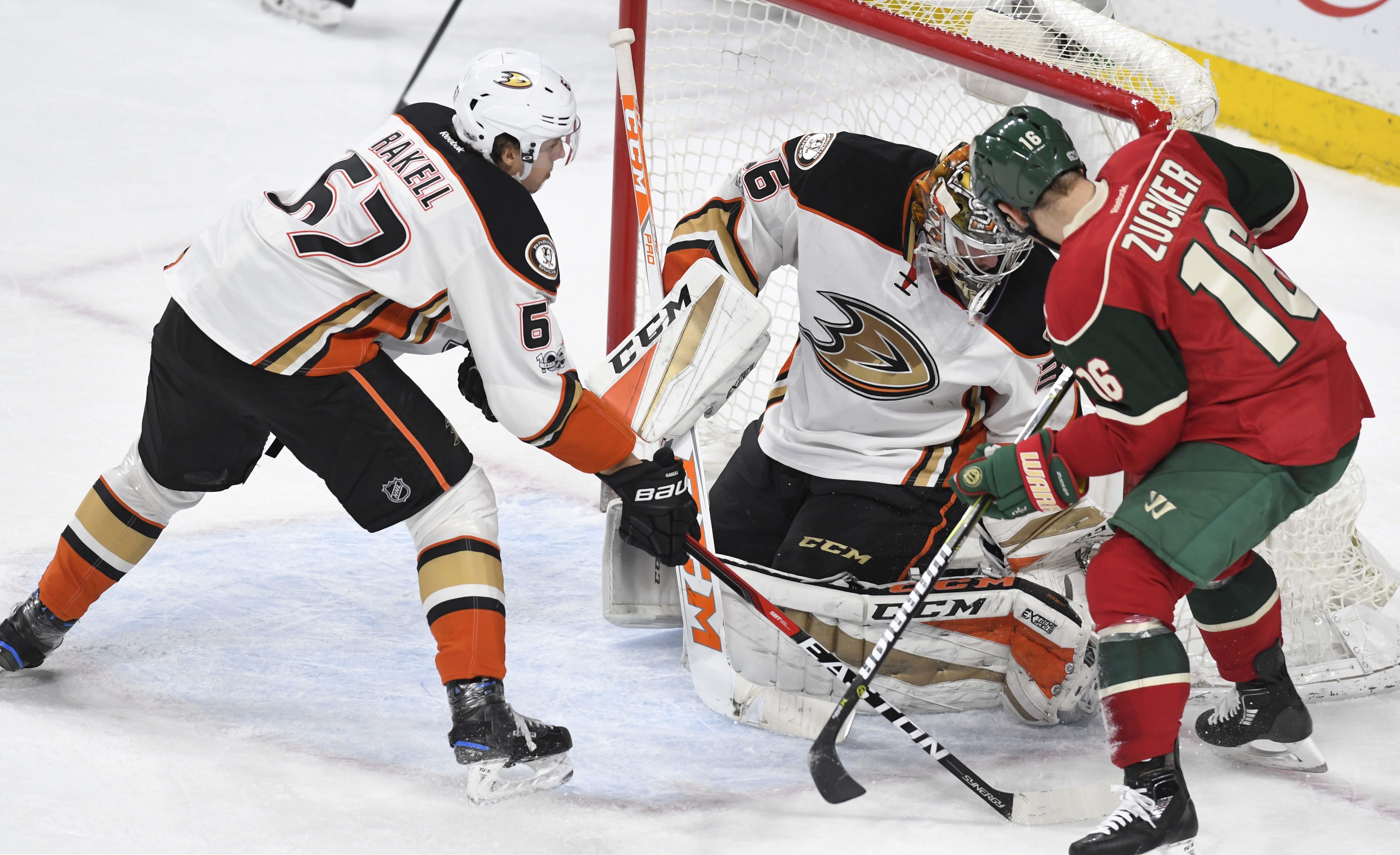 Ducks_wild_hockey_22863