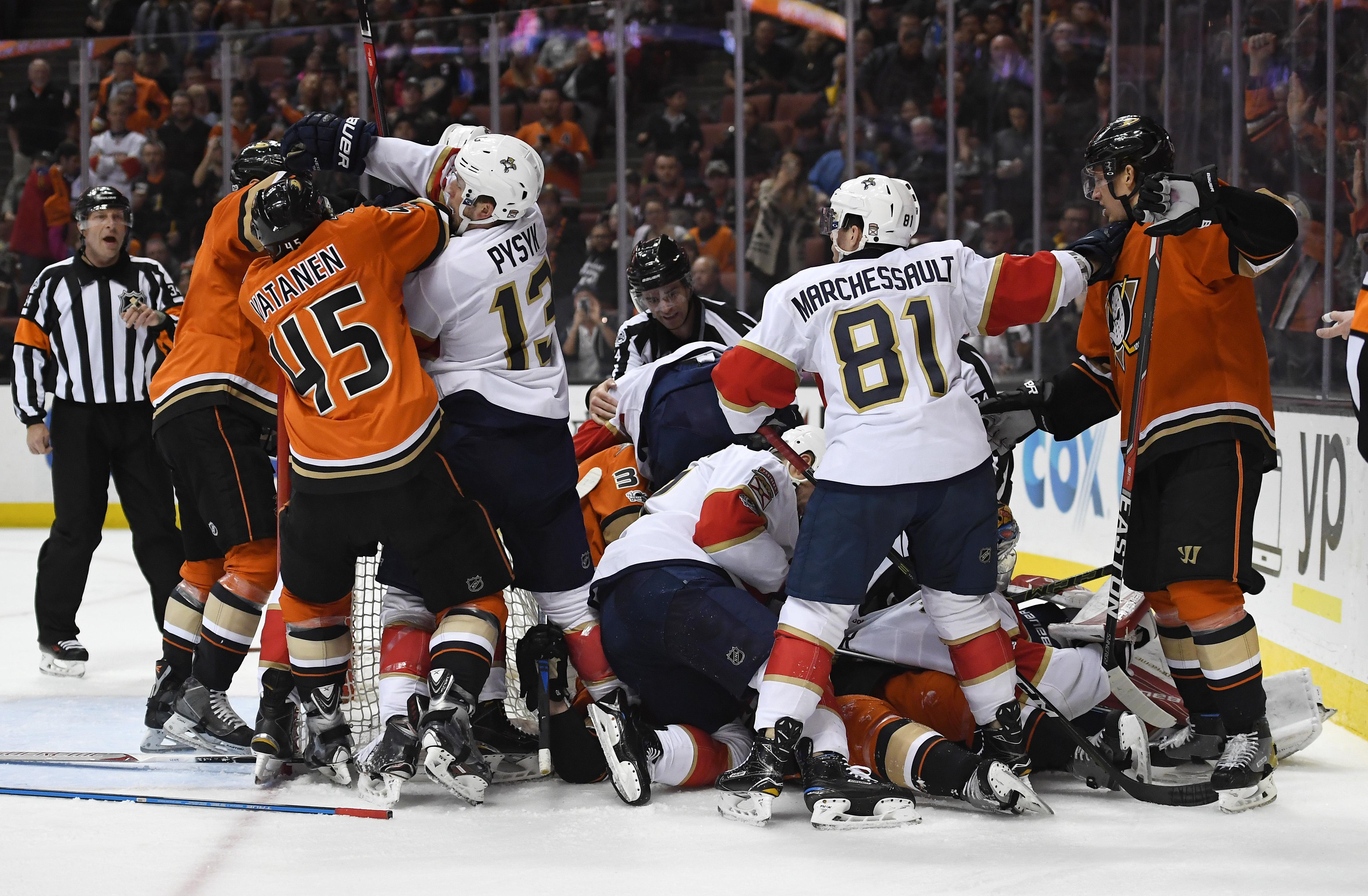 Panthers_ducks_hockey_84820