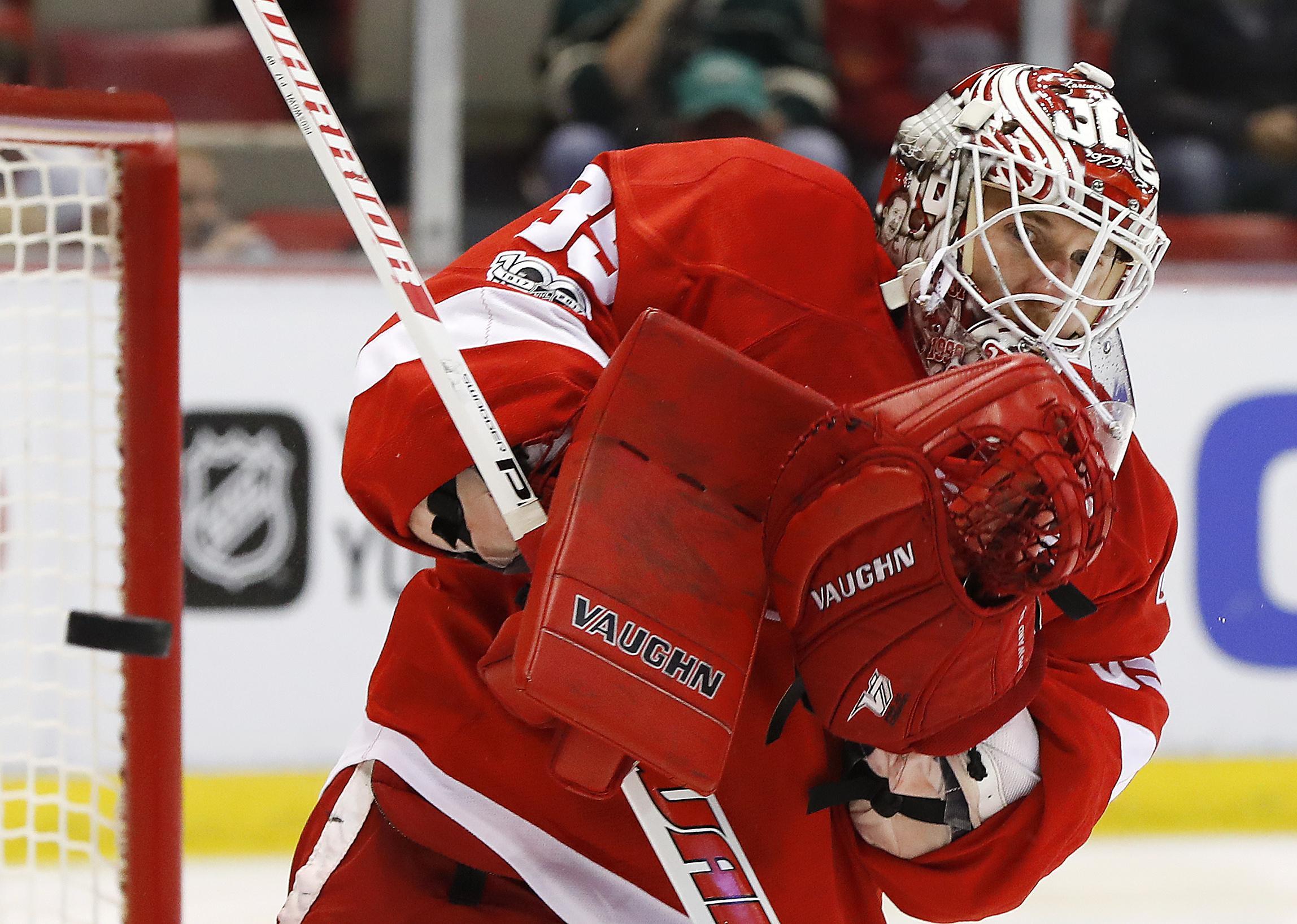 Wild_red_wings_hockey_85880